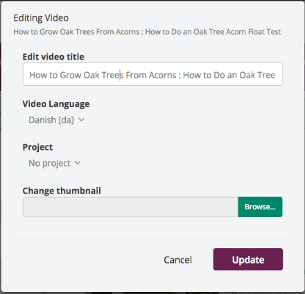 screenshot of revised edit video modal